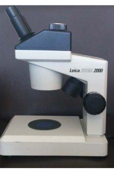 لایکا زوم 2000