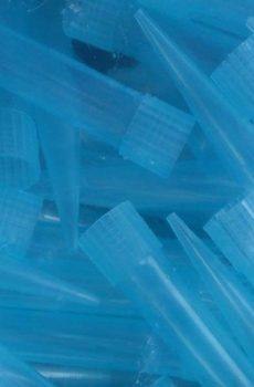 تیپ آبی سمپلر